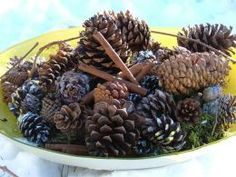 Homemade Cinnamon scented pinecones!  I wonder what else would work similar to the pine cones. Wood blocks maybe?  Pine cones open as they dry.  I sped up this process in my oven last week. I made the mistake of putting them on the actual oven rack and some pinecones that partially dropped through the rack opened up around it! Oops!!