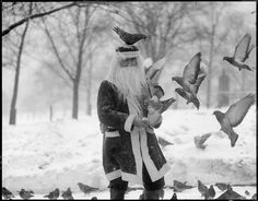Vintage Santa feeds the pigeons - Merry Christmas 2014 to all my friends and followers - from Jane xx