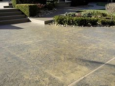 colored and stamped concrete patio