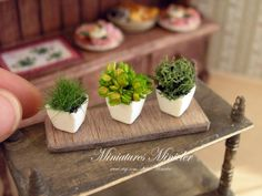 Dollhouse Kitchen Herbs Collection  Ask a Question $16.47 USD