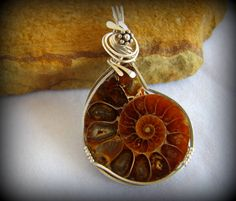 Fossilised ammonite necklace on faux leather or silver plated chain items similar to ammonite fossil pendant wire wrapped jewelry handmade silver wire wrap ammonite fossil pendant ammonite pendant artisan jewelry aloadofball Image collections