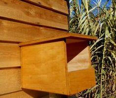 Caja nido para cernícalo