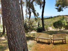 View http://www.barbaratorresan.it/