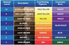 pravana color chart pdf - Google Search