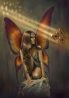 ~ Enigma Fairy by Chris Down ~