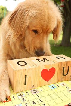 ...I Love You Too!