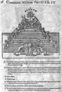 Da A. Libavio, Commentariorum Alchymia, Tractatus quartus, De Lapide Philosophorum, Francfort 1606