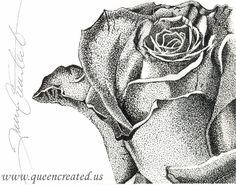 Stipple Rose, Stipple Art, Pen and Ink Drawing