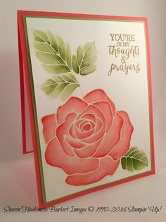 Stampin Up! Rose Wonder in Calypso Coral Pear Pizazz on shimmery white cardstock Stamping Up Cards, Rubber Stamping, Beautiful Handmade Cards, Get Well Cards, Sympathy Cards, Flower Cards, Greeting Cards Handmade, Scrapbook Cards, Homemade Cards