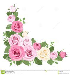 rosas-rosadas-y-blancas-capullos-de-rosa-y-hojas-28991309.jpg (1300×1390)