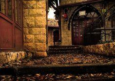 Secret Door?? | Flickr