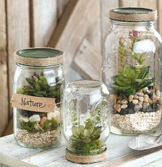 DIY Mason Jar Crafts - With a few crafty touches, you can turn ordinary jars and bottles into charming home accessories, cute gift containers, clever keepsakes, and helpful organizers. All you need is a little paint, some jute or burlap, labels or tags, or other trims.   Easy projects in DIY Mason Jar Crafts include Terrariums, a Storage Shelf with hanging jars, a monogrammed Kitchen Storage jar, glittery Tablescape Jars, a Travel Savings Jar, Beach Memory Jar, Sand Collection Bottle…