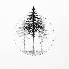 #Illustration #Spruce #Drawing #Tattoo Tree, Forest, Photograph, Black and white - Photo by @blackworknow - Follow #extremegentleman for more pics like this!