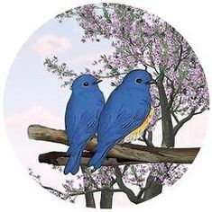 Robbins Aria Screen Door Magnets - That Always Stay UP Using Our Exclusive Twist, Click and Lock Design - Keep People and Pets from Walking Into Screens Mirror Window Film, Window Films, Housewarming Basket, Photo Stock Images, Best Windows, Door Stickers, Static Cling, Shower Doors