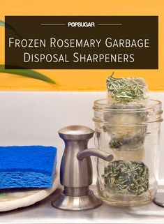 Frozen Rosemary Garbage Disposal Blade Sharpeners