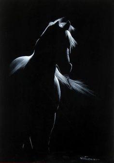 Vlad Atasyan - Paintings for Sale Silhouette Painting, Horse Silhouette, Black Canvas Paintings, Paintings For Sale, Black And White Painting, White Art, Horse Drawings, Animal Drawings, Black Paper Drawing
