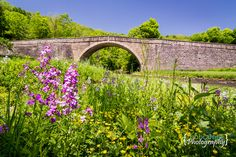 200 Year old Casselman Bridge in Grantsville, MD