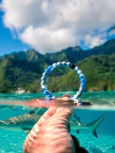 Lokai Support of Oceana Limited Edition