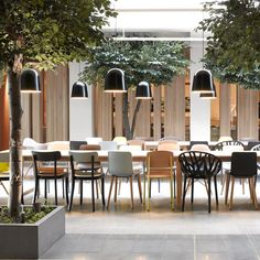 A forest-like hotel lounge in Oslo by Haptic.