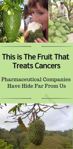 Numerous experts claim that this fruit is the most potent cancer-fighter on the planet, and it is completely natural! What's best, it has been found