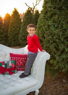 SugarSnapsOC Christmas Photos Pine Christmas Tree, Christmas Photos, Christmas Tree Photography, Farm Photo, Photo Galleries, Boots, Fashion, Xmas Pics, Crotch Boots