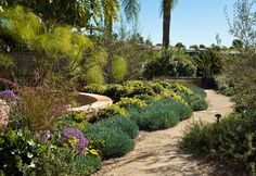 134 Best Landscaping Frontyard Images Dry Garden Landscaping
