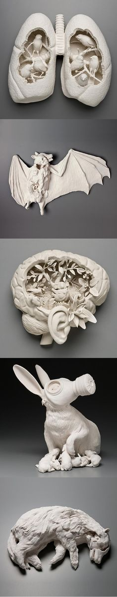 Porcelain Sculptures by Kate MacDowell  Creepy and cool at the same time.