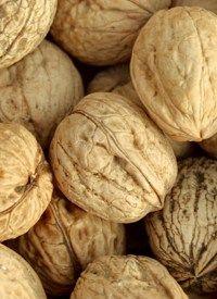 Nuts   Health Light Newsletter