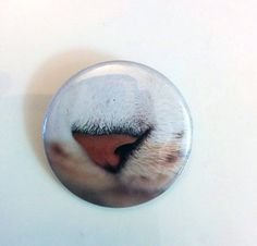 Cat Noses I 1.5 inch Pinback Buttons Magnets by BayleafButtons
