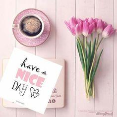 Good Morning Tuesday, Good Morning Cards, Morning Love, Good Morning Coffee, Good Morning Picture, Good Morning Flowers, Good Morning Messages, Good Morning Good Night, Morning Pictures