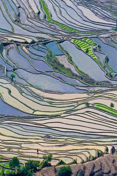 Pattern of rice terrace fields during spring time in Yuanyang, China
