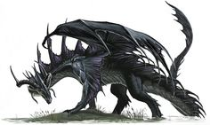Black dragon.