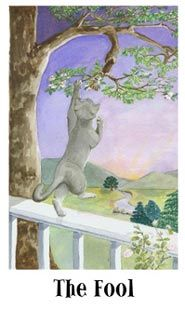 Cat's Eye Tarot 1