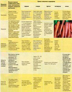 Подкормка растений в таблице   Osadovod - Все о садe, огороде и дизайне