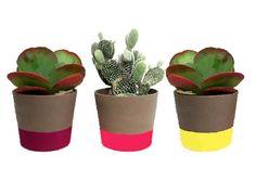 Garden State Pots