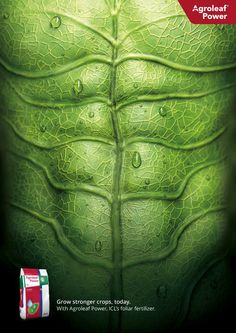 ICL, Agroleaf Power Print Advert By Bureau Loos: Grow stronger crops Clever Advertising, Advertising Design, Advertising Campaign, Ads Creative, Creative Posters, Creative Design, Organizar Instagram, Graphisches Design, Booth Design