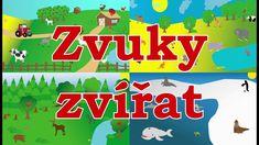 🇨🇿🐼Zvuky zvířat pro děti - Zvířátka z farmy, Zvířátka z lesa, Zvířátka v ZOO, Mořská zvířátka Farmy, Zoo, Youtube, Youtubers, Youtube Movies