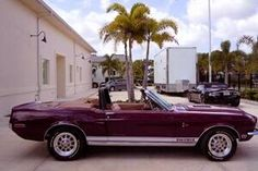 purple wedding #car - 1968 Ford Shelby GT500 KR Convertible in #purple Ford Shelby, Shelby Gt500, Wedding Car, Purple Wedding, Purple Cars, All Things Purple, Convertible, Wheels, Muscle