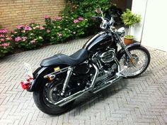 My 2005 Harley Davidson XL1200C