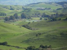 Novato, CA...lived here for 3 and a half years.