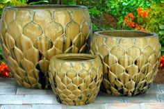 Fish Scale Planter