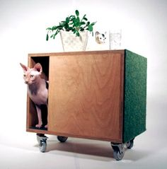 Good place to hide litter box, scratching post, and feed on top all in one..