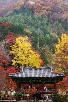 the Autumn of the temple | Flickr - Photo Sharing!