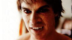 Αποτέλεσμα εικόνας για ian somerhalder vampire diaries images with blood