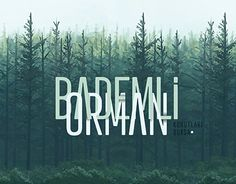 "Check out new work on my @Behance portfolio: ""Bademli Orman"" http://on.be.net/1gdHtgo"