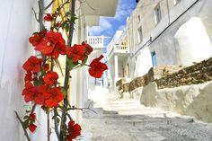 Καλή εβδομάδα από το πανέμορφο νησί μας! #Mykonos #FloraSuperMarkets