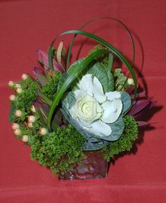 small arrangement using hypericum, lily grass, cabbage and safari sunset