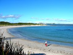 The bay is ideal for swimming, fishing, boating; sandy beach tracks provide access to wild and rugged coastline for four-wheel drives. The area is renowned for its wildflowers, including the endemic flowering gum and over 40 species of native orchids.