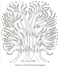 The Linguistic Tree of Gondor. matthen: An...   Languages, Hell Yeah!