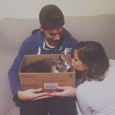 Rubi detesta colo mas ama caixas. Encontramos a solução perfeita. by agapetata